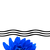 Dahlia Flower and Wavy Lines Triptych Canvas 1 - Blue