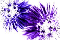 Nature's Dance - Blue Purple